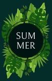 夏天与鲜绿色的棕榈叶的卡片设计 免版税库存图片