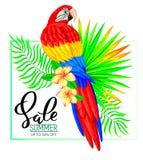 夏天与鹦鹉花和叶子的销售构成 免版税库存图片