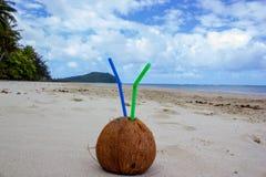 夏天与2秸杆的椰子鸡尾酒在海角苦难在热带的Daintree国立公园在昆士兰北部, 库存照片