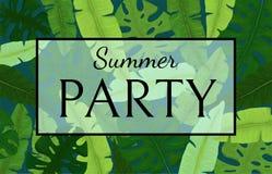 夏天与绿色热带叶子的党横幅 库存图片