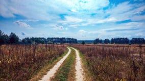 夏天乡下公路和领域在蓝色美丽的多云天空的背景和美好的森林距离  库存照片