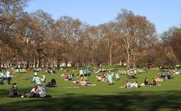 夏天伦敦公园 库存照片