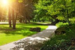 夏天公园和草坪 图库摄影