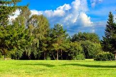 夏天公园横向 免版税库存照片