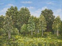 夏天农村风景在俄罗斯 领域和森林,一棵高草 抽象画布五颜六色的用花装饰的油原始绘画 图库摄影