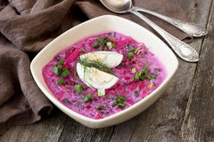 夏天冷的汤用甜菜、黄瓜、牛乳气酒和鸡蛋 免版税图库摄影