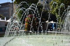 夏天前启发的喷泉花 免版税库存照片