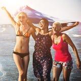 夏天友谊统一性团结享受概念 免版税库存图片