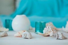 夏天启发假期与海滩海星和壳的构成背景在白色木桌特写镜头 鱼 免版税库存图片