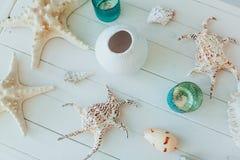 夏天启发假期与海滩海星和壳的构成背景在白色木桌特写镜头 鱼 库存照片