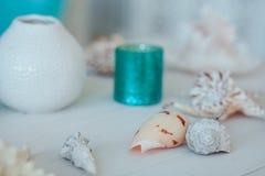 夏天启发假期与海滩海星和壳的构成背景在白色木桌特写镜头 鱼 免版税图库摄影