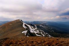 夏天喀尔巴阡山脉的风景 免版税库存照片