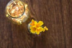 夏天在与bokeh的一个玻壳开花 图库摄影