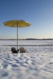 夏天在冬天 免版税库存图片