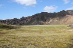 夏天在冰岛 库存图片
