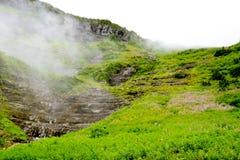 夏天在冰川国家公园在一有雾的天 库存图片