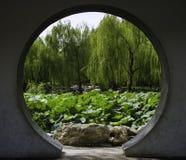 夏天在北京陶然亭公园 库存图片