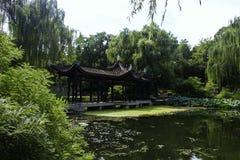 夏天在北京陶然亭公园 库存照片