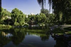 夏天在北京龙潭公园 库存图片