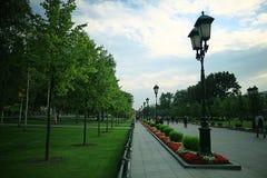 夏天在城市公园 库存照片