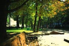 夏天在城市公园 库存图片