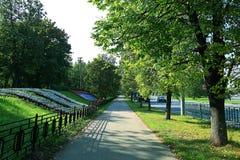 夏天在城市公园 免版税库存图片
