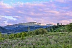 夏天在山的早晨薄雾,阳光通过低桃红色clou 库存照片