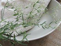 夏天在有亚麻制毛巾的表面无光泽的板材在粗麻布背景,食物照片支柱开花 免版税库存照片