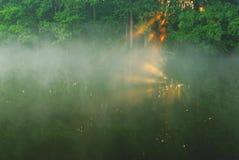 夏天在河的早晨雾 艺术性的详细埃菲尔框架法国水平的金属巴黎仿造显示剪影塔视图的射击 库存照片