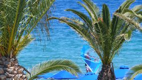夏天在清楚的公海海洋有风weathe的水上运动在欧洲 股票录像