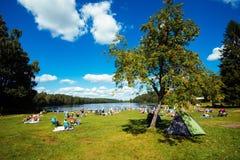 夏天在瑞典 免版税库存图片