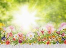 夏天在白色大阳台的花床在背景 免版税库存图片