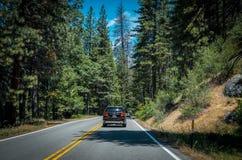 夏天在美洲杉国家公园,加利福尼亚,美国 森林高速公路通过自然公园 库存图片