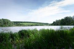 夏天在自然的早晨风景在河附近 图库摄影