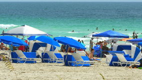 夏天在迈阿密海滩 股票视频