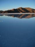 夏天在阿塔卡马沙漠 免版税库存照片