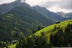 夏天在阿尔卑斯 免版税库存图片