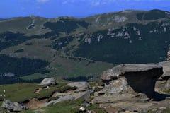 夏天在Bucegi 免版税库存照片
