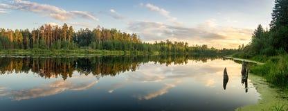 夏天在Ural湖的晚上风景有在岸,俄罗斯的杉树的 免版税库存照片