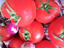 夏天大蒜顶视图夏天红色蕃茄新鲜的气味气味  库存图片