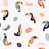 夏天天堂toucan传染媒介无缝的样式 库存例证