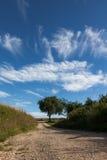 夏天天空3 库存照片