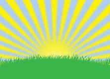 夏天太阳作用样式墙纸背景 图库摄影