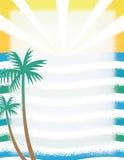 夏天太阳/棕榈树/海洋 免版税图库摄影