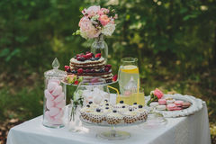 夏天婚礼野餐的与甜点,杯子装饰的甜桌 免版税库存图片