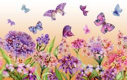 夏天宽横幅 生动的屈曲花属植物花和五颜六色的蝴蝶在橙色背景 无缝的全景花卉样式 皇族释放例证