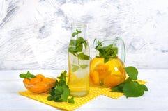 夏天寒冷饮料 可口刷新的饮料用杏子和薄菏在玻璃 库存照片