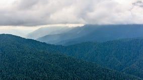 夏天山庄严风景  山的有薄雾的倾斜的看法在距离的 早晨有薄雾具球果 免版税库存照片