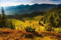 夏天山庄严风景  山的有薄雾的倾斜的看法在距离的 免版税库存照片