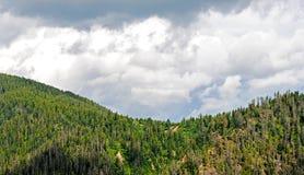 夏天山横向 小山和草甸的看法贝加尔湖的,俄罗斯 库存图片
